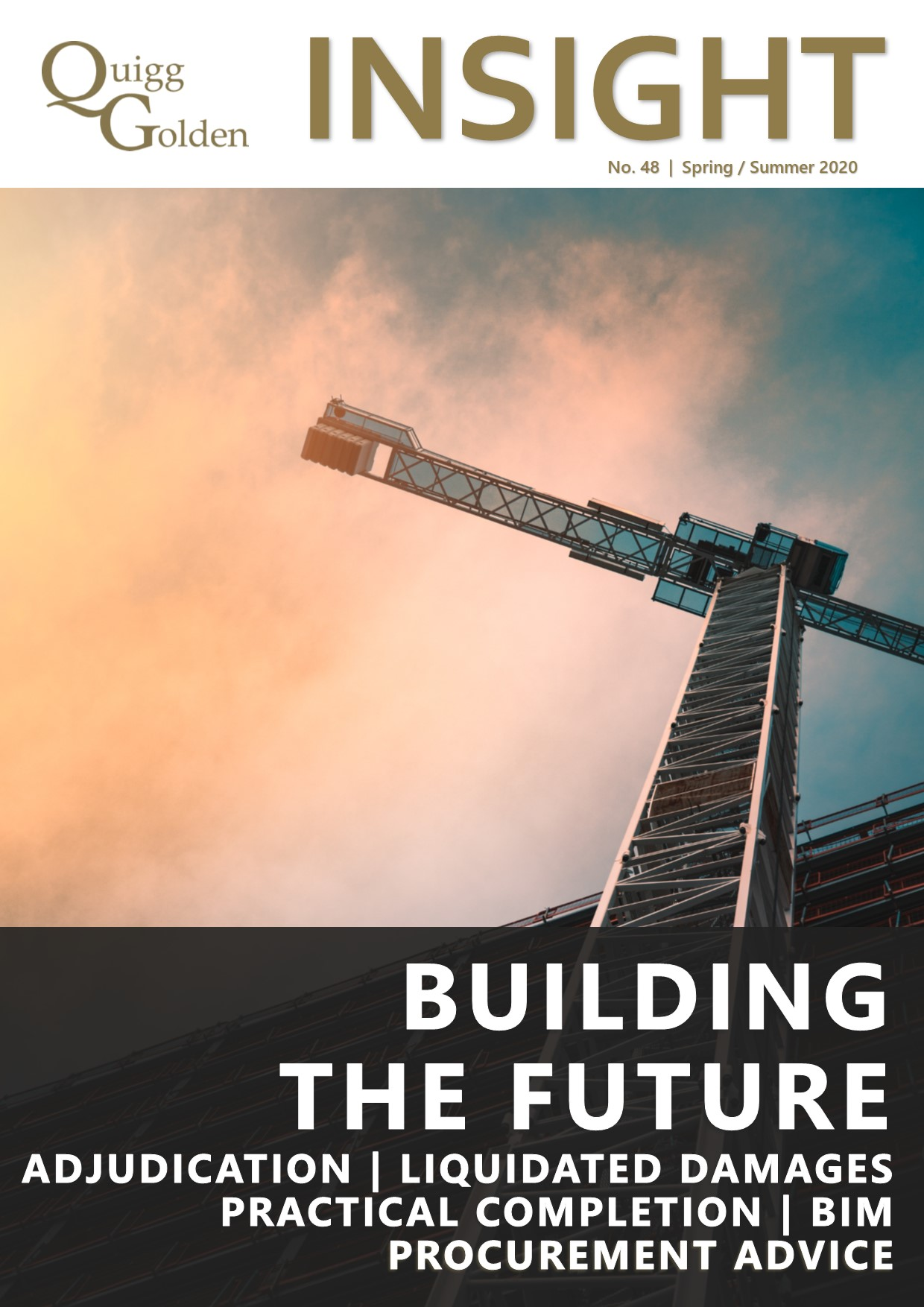 Quigg Golden Insight Newsletter - Building the Future